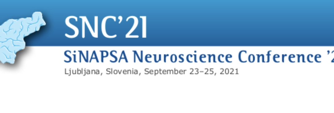 Vabilo k SiNAPSINi nevroznanstveni konferenci 2021
